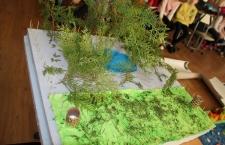 ecologizare_3